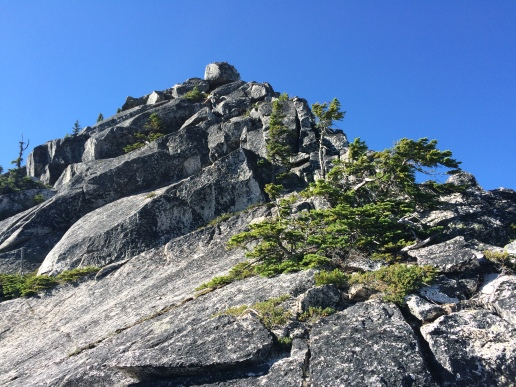 Scramble to the top